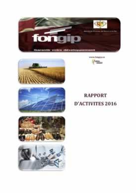 RAPPORT ANNUEL ACTIVITES 2016 - VF